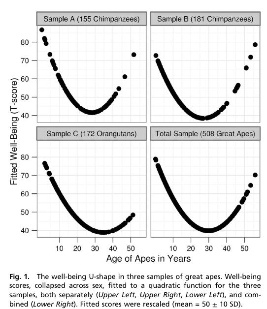 Midlife crisis statistics